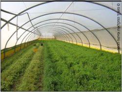 פריסת התעשייה החקלאית בישראל - סומנו 10-15 מוקדי פעילות באזורים עתירי חקלאות...